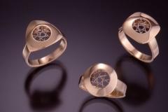 Spyro Rings